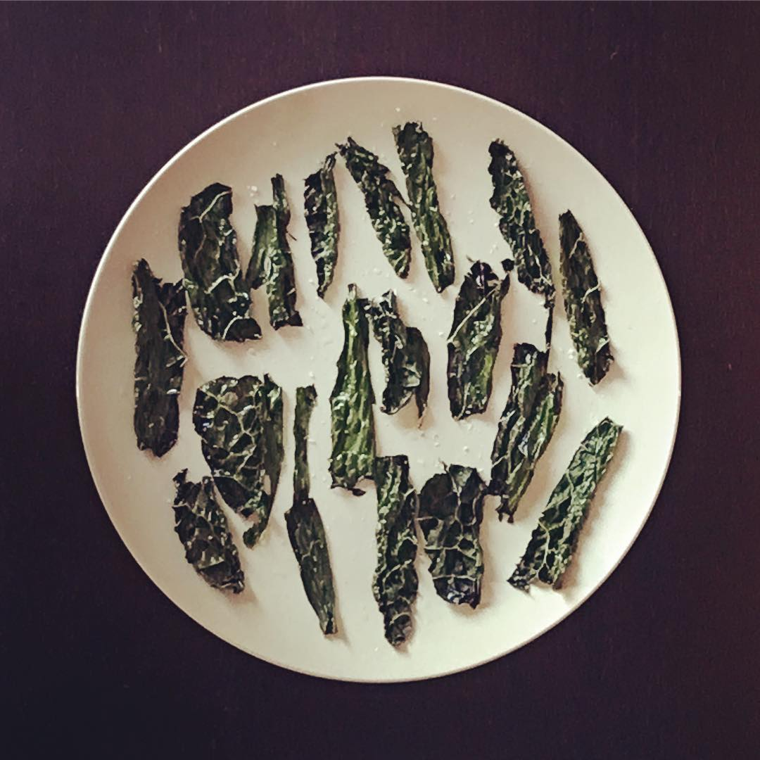 tiny trash can homemade kale chips in microwave