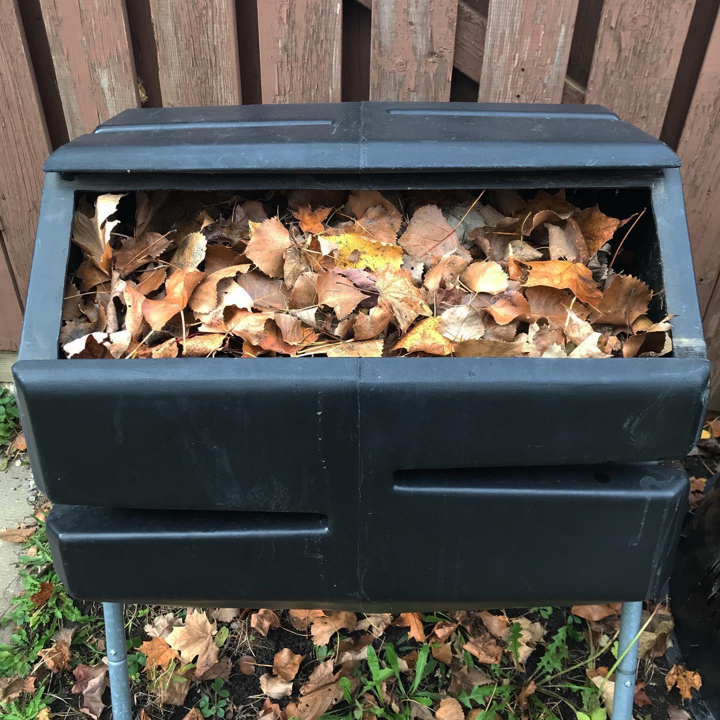 Tiny Trash Can fall leaves for compost