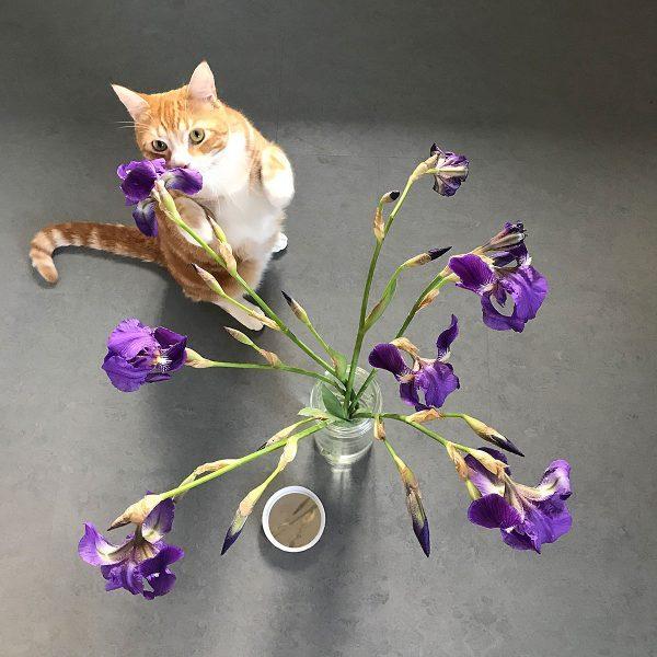 Tiny Trash Can flower vase