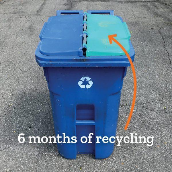 Tiny Trash Can 2020 trash diary recycling