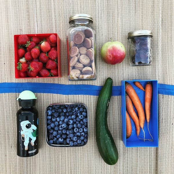 tiny-trash-can-zero-waste-picnic